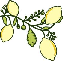 Marmellata di Limoni   Sicitaly