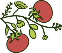 Pomodoro | Sicitaly